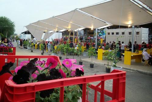 Dietro i fiori del #mercato metropolitano by Ylbert Durishti