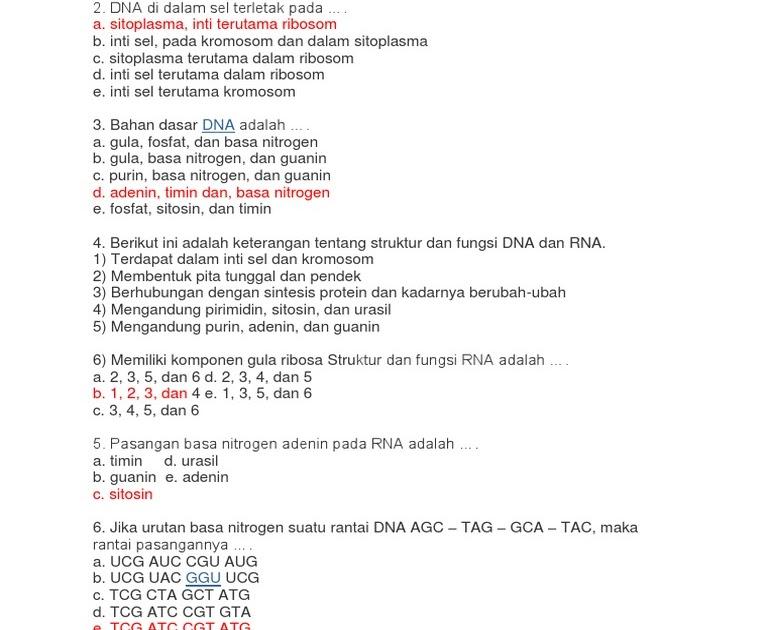 Pernyataan Yang Benar Tentang Struktur Kromosom Adalah ...
