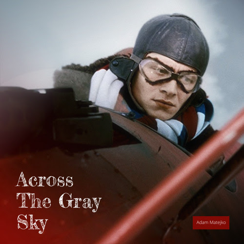 Across The Gray Sky by Adam Matejko