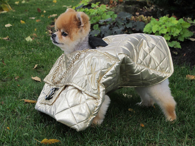 Dog Walking Bag Buy Blog
