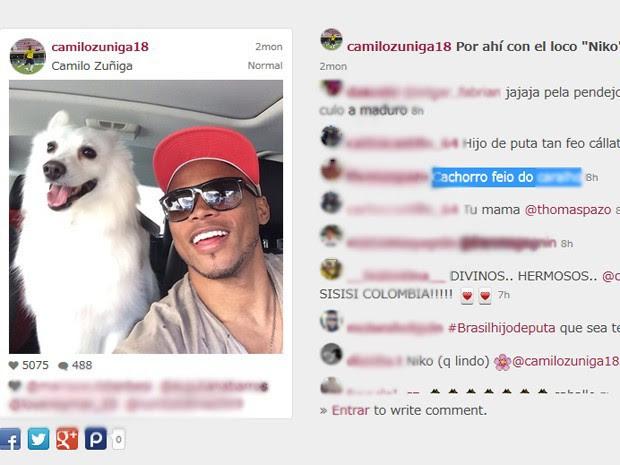 Internautas brasileiros falam mal de cachorro de Zuñiga no Instagram (Foto: Reprodução/Webstagram)