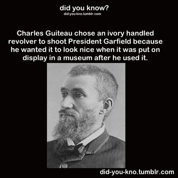 Fascinating Trivia That's Good to Know