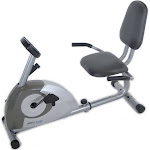 Stamina Products 15-1350 Magnetic Recumbent 1350 Leg Exercise Bike, Metallic Grey