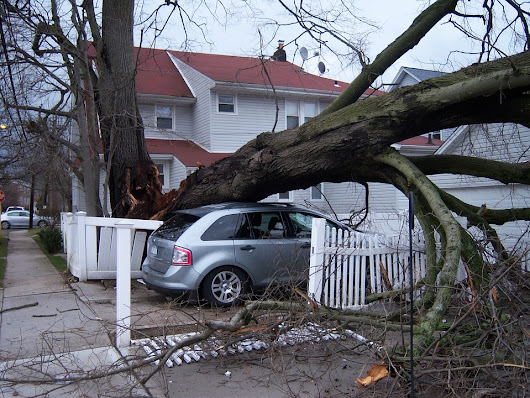 How to Prepare for a Wind Storm: What to do before, during and after the storm