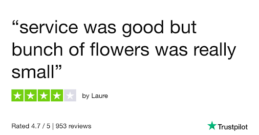 Laure gave Online Flower Shop 4 stars. Check out the full review...