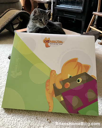 Thankful Thursday Blog Hop: A Cat Amazing Review and Worldwide Giveaway - Brian's Home