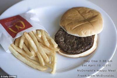 mcdonalds sanduíche podre decomposição