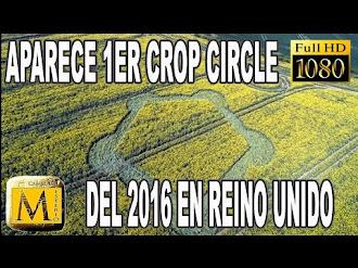 Aparece El Primer Crop Circle Del 2016 en Reino Unido