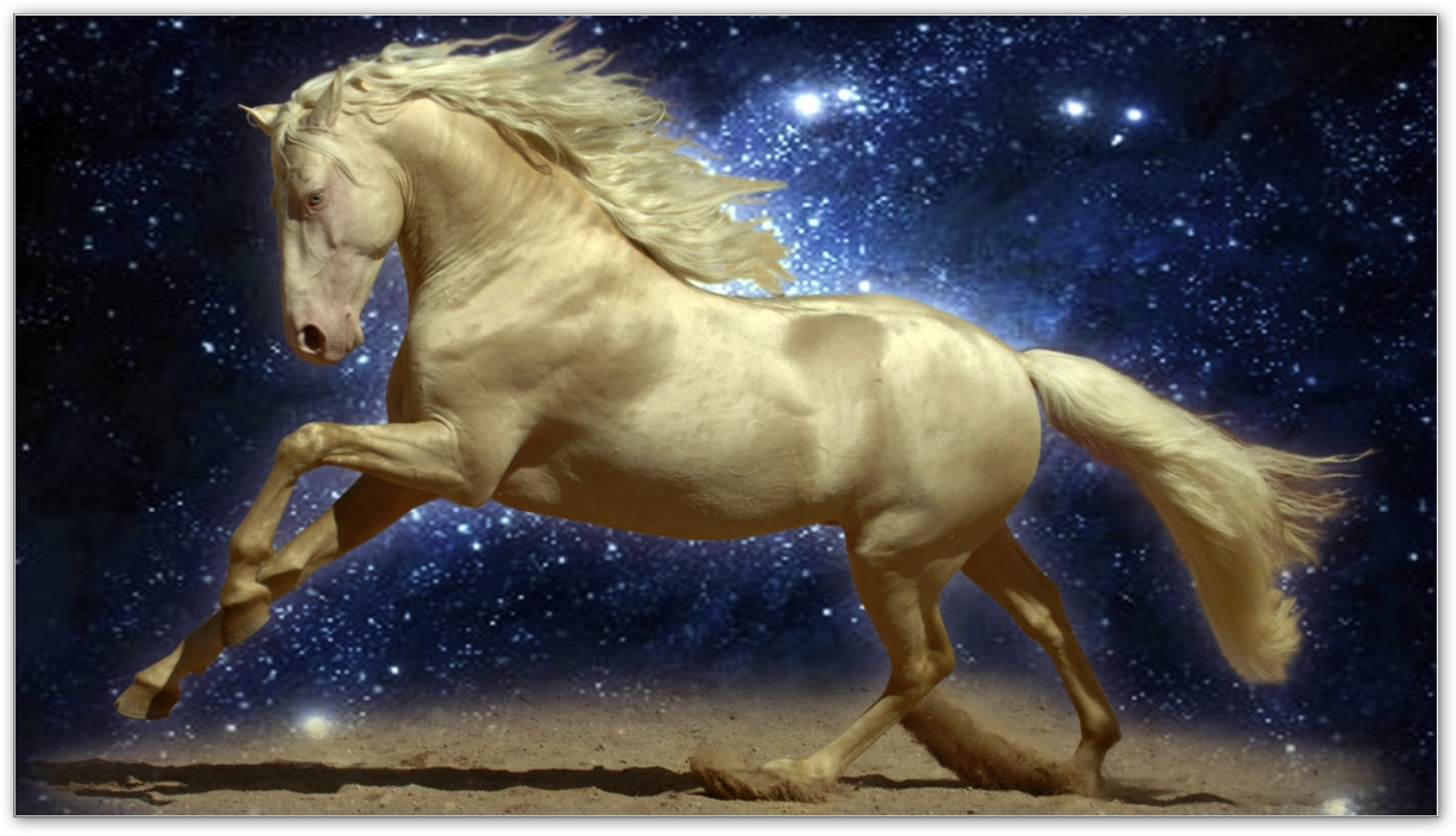 The Infinite Magic Of Horses Inspired Living