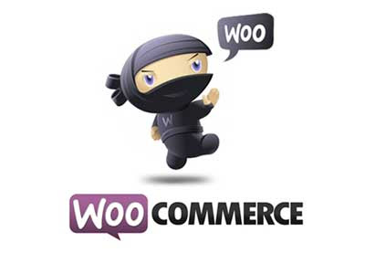 The Beginners Guide to WooCommerce: Checkout Options, Part 1 - Tuts+ Code Article