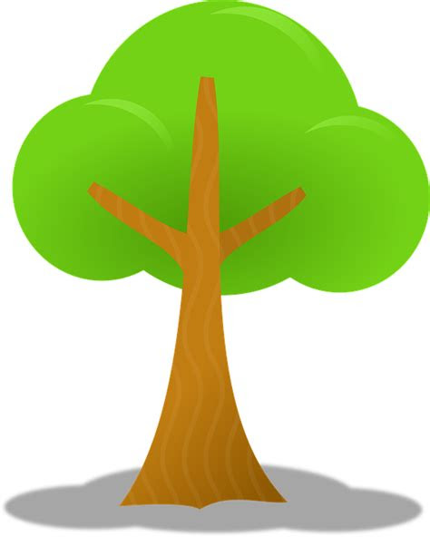 pohon hijau daun gambar vektor gratis  pixabay