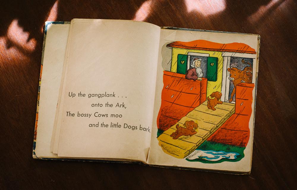 child's ark
