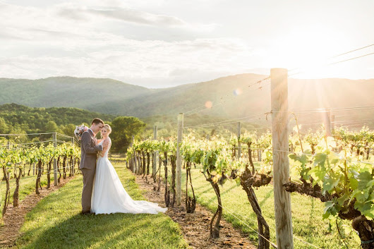 Romantic Veritas Vineyard Wedding