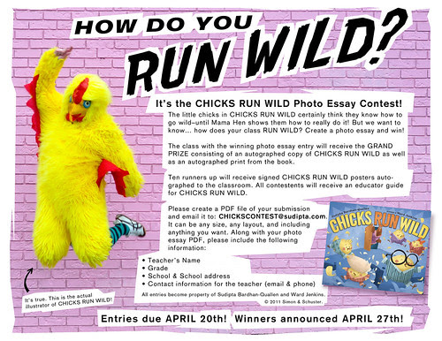 Chicks Run Wild Photo Essay Contest