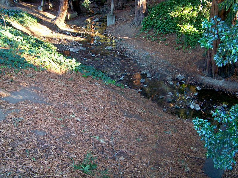 File:Codornices Creek.JPG