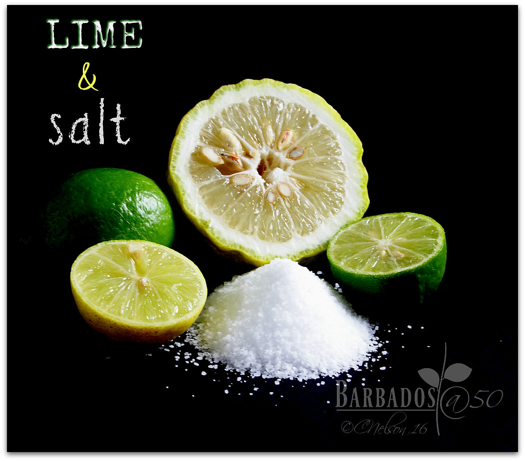 Lime and salt photo Limesalt4_zps7vwfhjzz.png