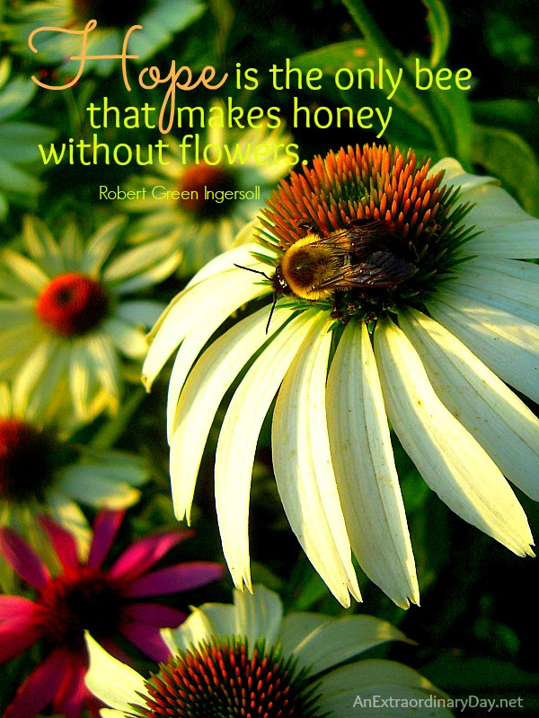 Hope For The Flowers Quotes 90 Best Flower Bloom Quotes