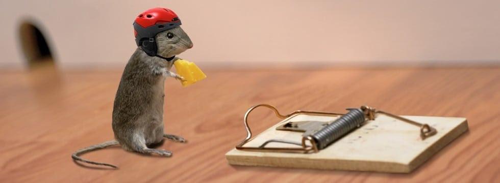 """Résultat de recherche d'images pour """"mouse with helmet"""""""