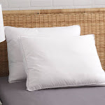Allied Home Pure Shield Queen Dust Mite/Bed Bug Resistant Gel Fiber Gusseted Pillow Set of 2 White Q