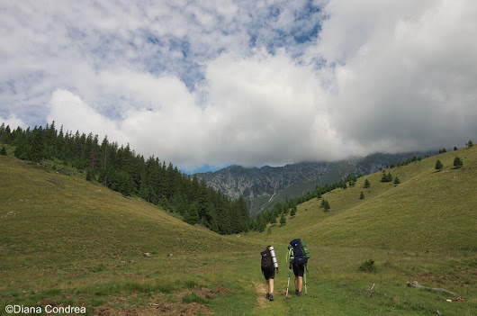 Hiking in Romania: Five Ideas If You're Based in Bucharest