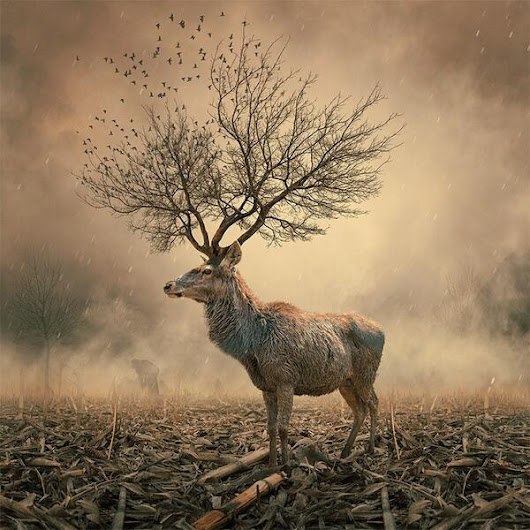Twitter / saatchi_gallery: We love the surreal photo ...