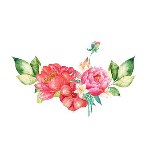 flowers png images   searchpngcom