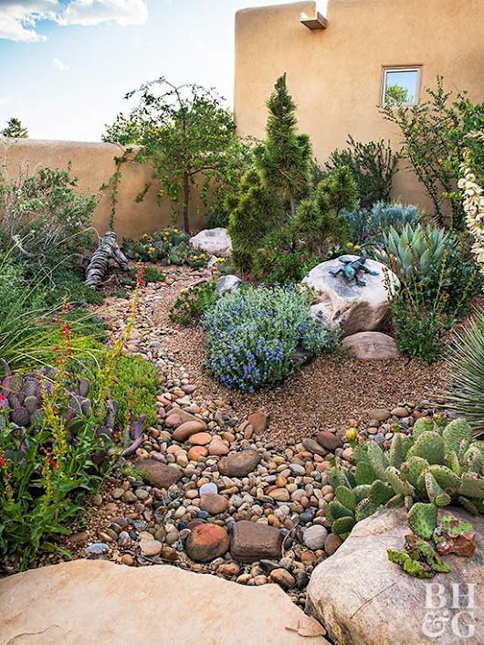 8 Steps to a Water-Wise Garden