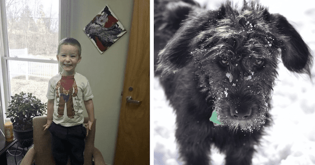 Boy And His Dog Abandoned In Cemetery Days Before Christmas