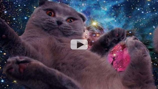 Mystifying Space Cats Photo-Bomb Hubble Imagery | Video