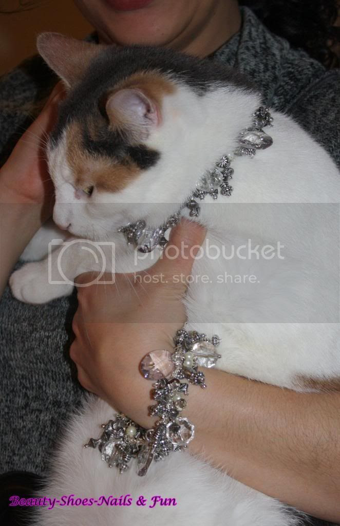 photo Meowmmys7_zps91ba3a35.jpg