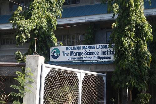 Marine Life (na hindi binabaan dahil closed)