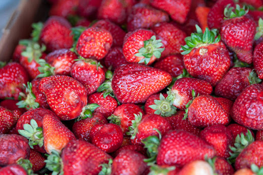 Troy Strawberry Festival: Southern Ohio's Top Spring Event - ResortsandLodges.com