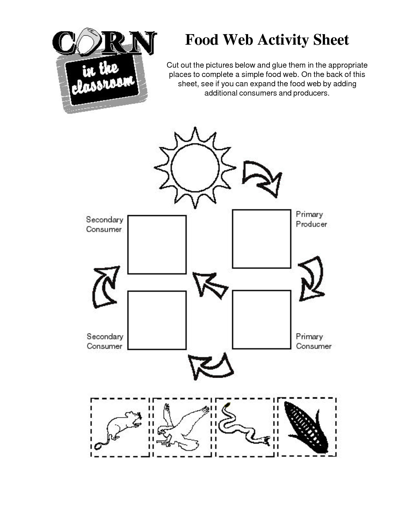 14 Best Images of Simple Food Chain Worksheets - Food ...