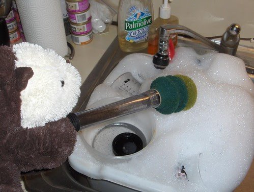 Shelly likes washing the dirty dishes!
