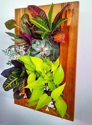 Oak Frame Kit With Irrigator Urban Zeal Planters
