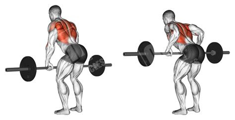 barbell upper body workout