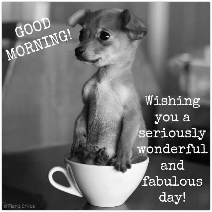 Good Morning Wishing You A Seriously Wonderful Day Pictures Photos