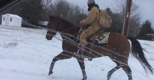 North Carolina woman ditches truck, rides horse to work