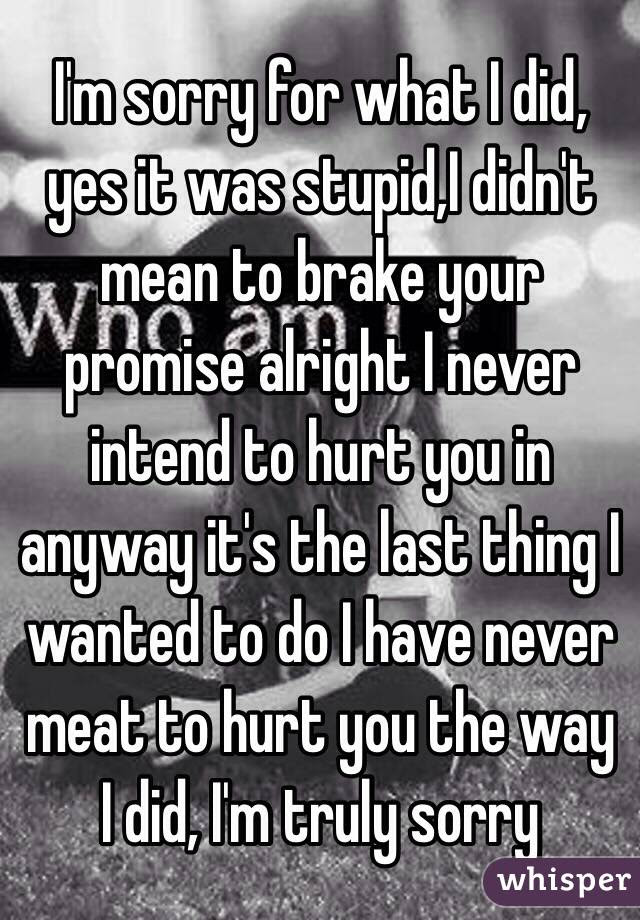 Im Sorry For What I Did Yes It Was Stupidi Didnt Mean To Brake