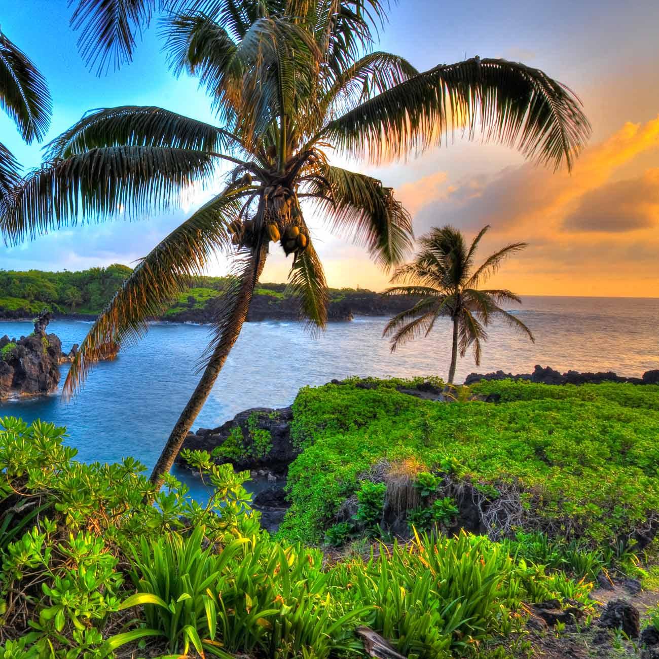 The Cultural History of Hawaii  HistoryCram