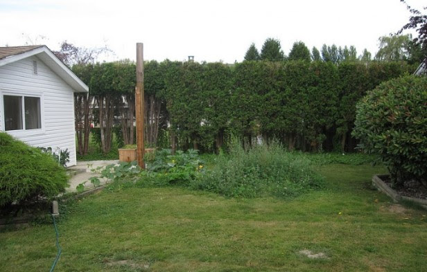 Online Garden Transformation