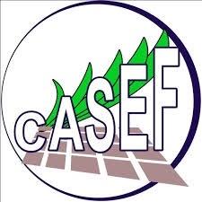 AO1D240369 - CASEF : Contrôle et la surveillance de travaux dans la Région Androy et Anosy