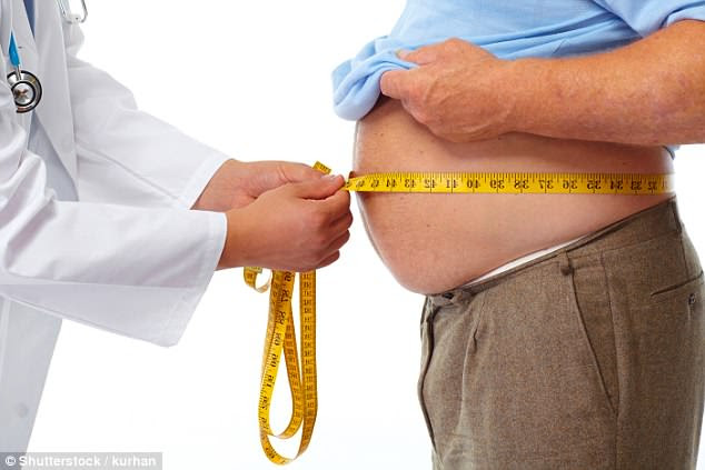 Almost a quarter of the world's population will be obese in less than 30 years (stock)