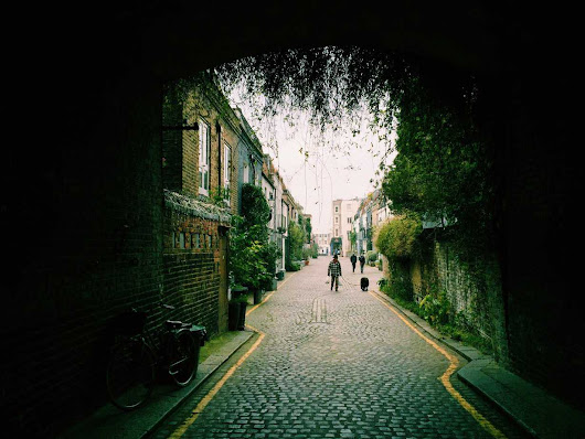 The Secret Mews of London