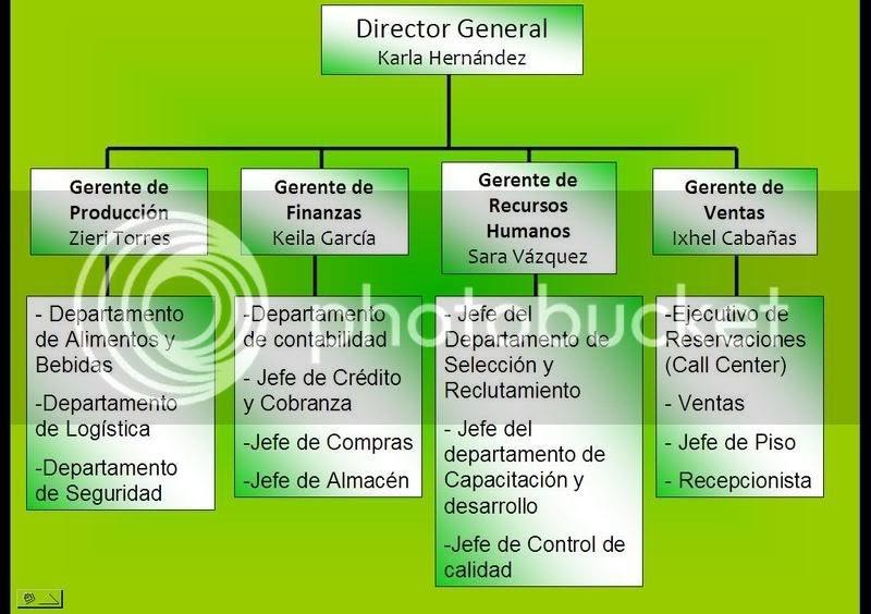 Manual de organizaci n y procedimientos organigrama for Manual de compras de un restaurante pdf