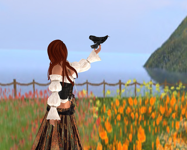Patchwork Princess & The Crow