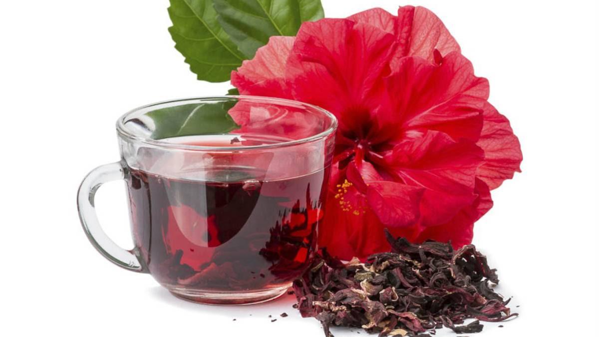 10 Propiedades De La Flor De Hibisco Ascom