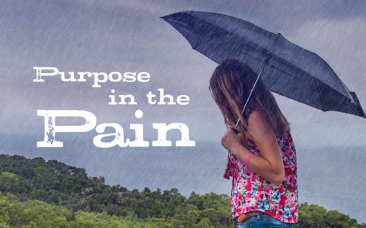 Purpose in the Pain - The Beauty Behind Your Struggles