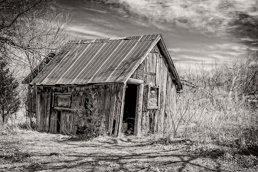 Old Shed III - B&W
