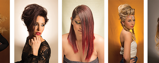 Shelby Township Michigan Salon Services